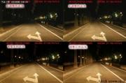 图文并茂 本田CR-V升级Q7透镜氙气大灯报告